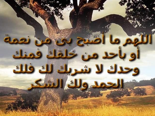 صور الدعاء لمصر