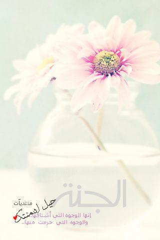 صور ادعية للشيخ محمد جبريل mp3