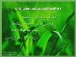 ادعية كل يوم من شهر رمضان