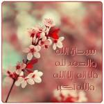 ادعية الشيخ الشعراوي مكتوبة