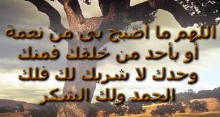 الدعاء لمصر