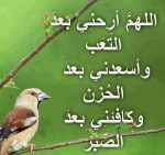 دعاء الرسول صلى الله عليه وسلم