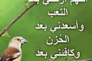 صور دعاء الرسول صلى الله عليه وسلم