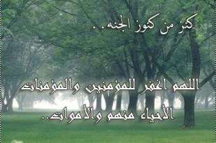 بالصور ادعية ماثورة عن النبي صلى الله عليه وسلم 71780e42f41 310x205