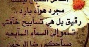 ادعية محمد البراك