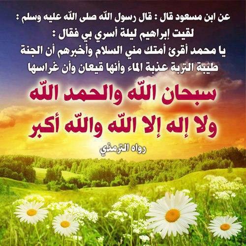 صورة صور ادعيه قرانيه 2303 2